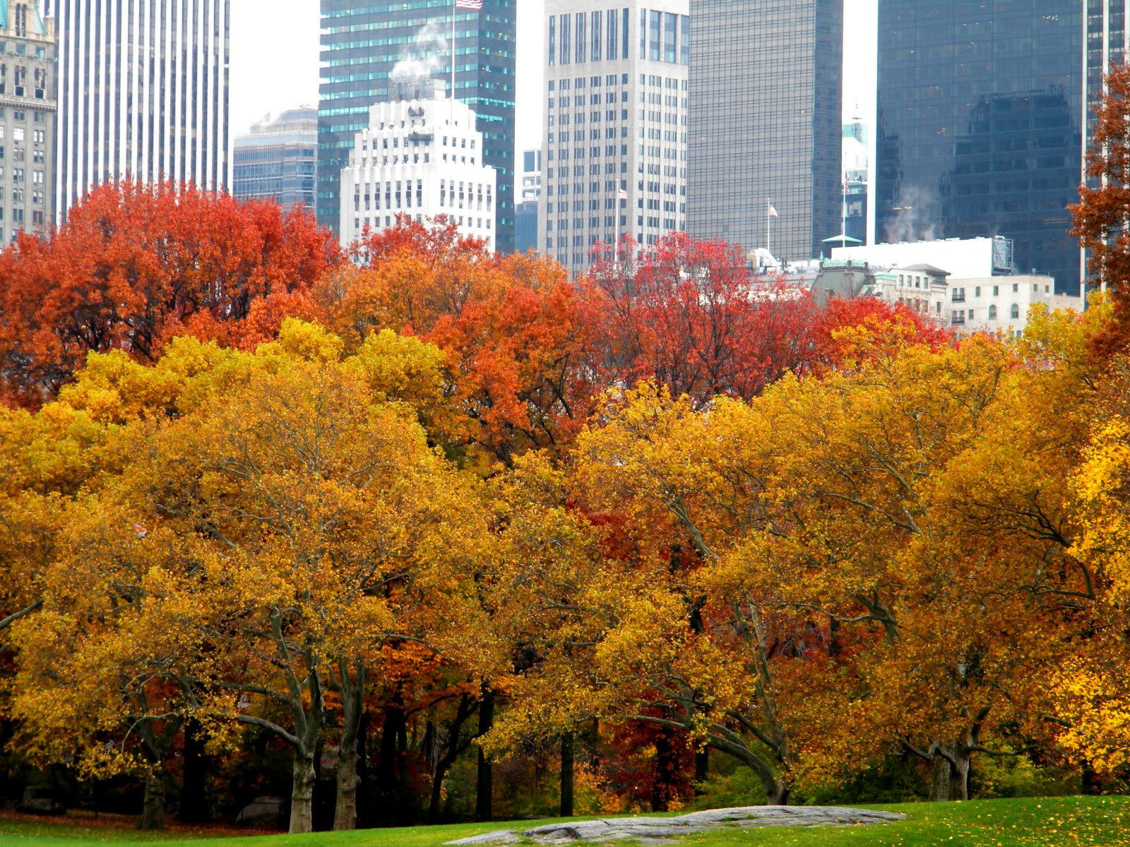 autumn in new york - photo #28