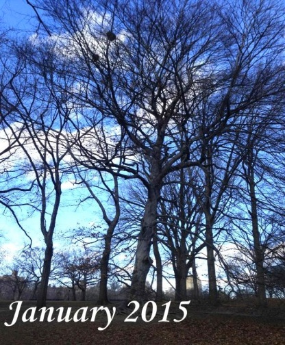 The Month Ahead: January