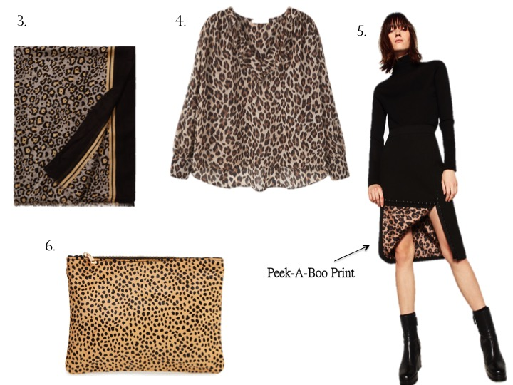 Currently Coveting: Leopard Print